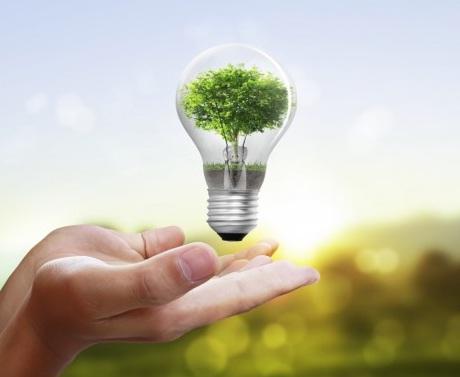 3 Tips Untuk Tempat Tinggal yang Hemat Listrik Dan Ramah Lingkungan